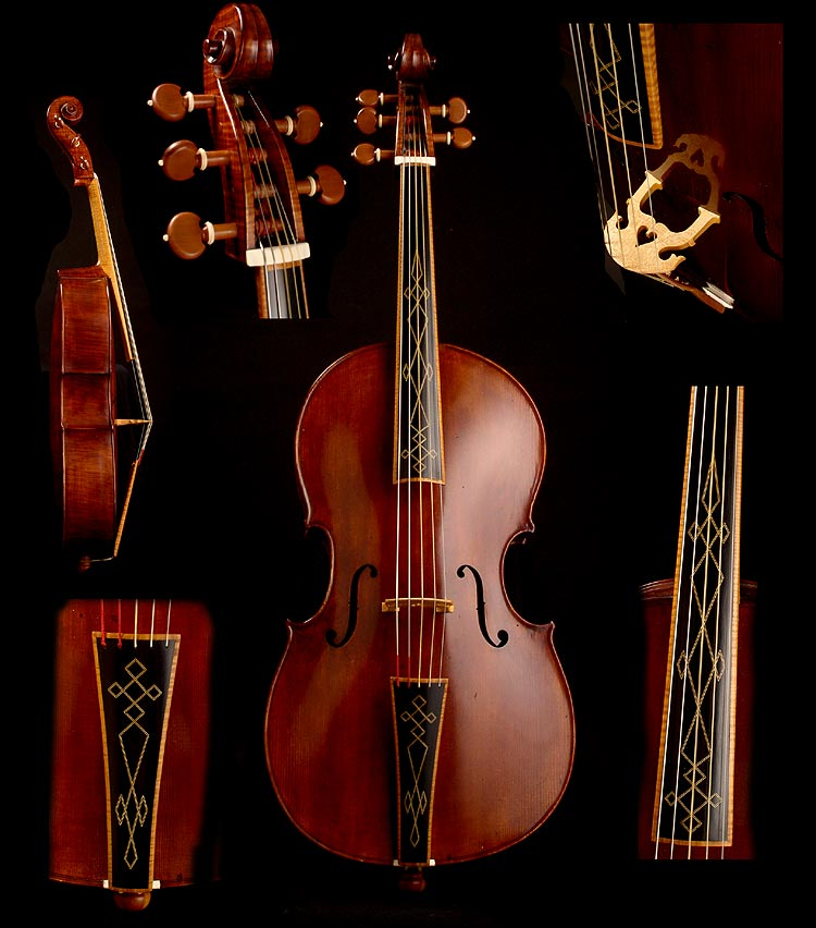 violoncello piccolo- by Warren Ellison